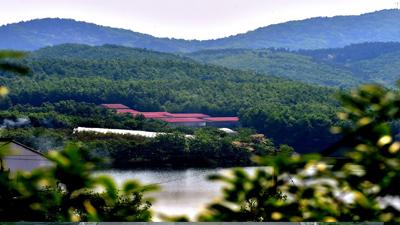 首批省級森林康養基地公示 19處森林美景入選