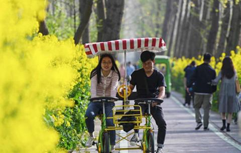 安徽合肥:濱湖踏青享周末