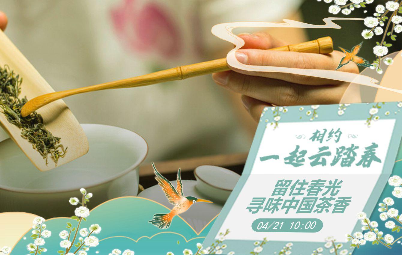相約一起雲踏春|留住春光 尋味中國茶香