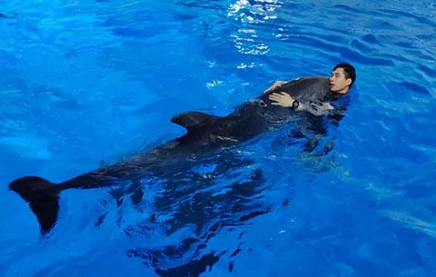 """我與海洋動物的""""親密關係"""""""