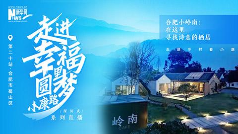 【新華雲直播】在合肥小嶺南尋找詩意的棲居