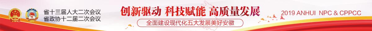 2019安徽两会